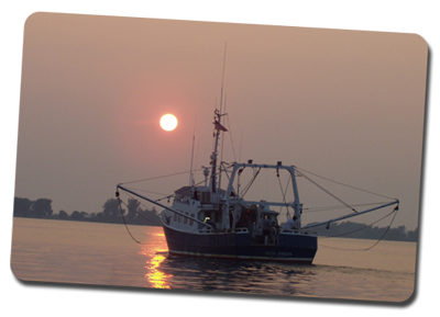 tcv fishingboat